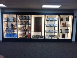 Finished and Full Trophy Case (2)